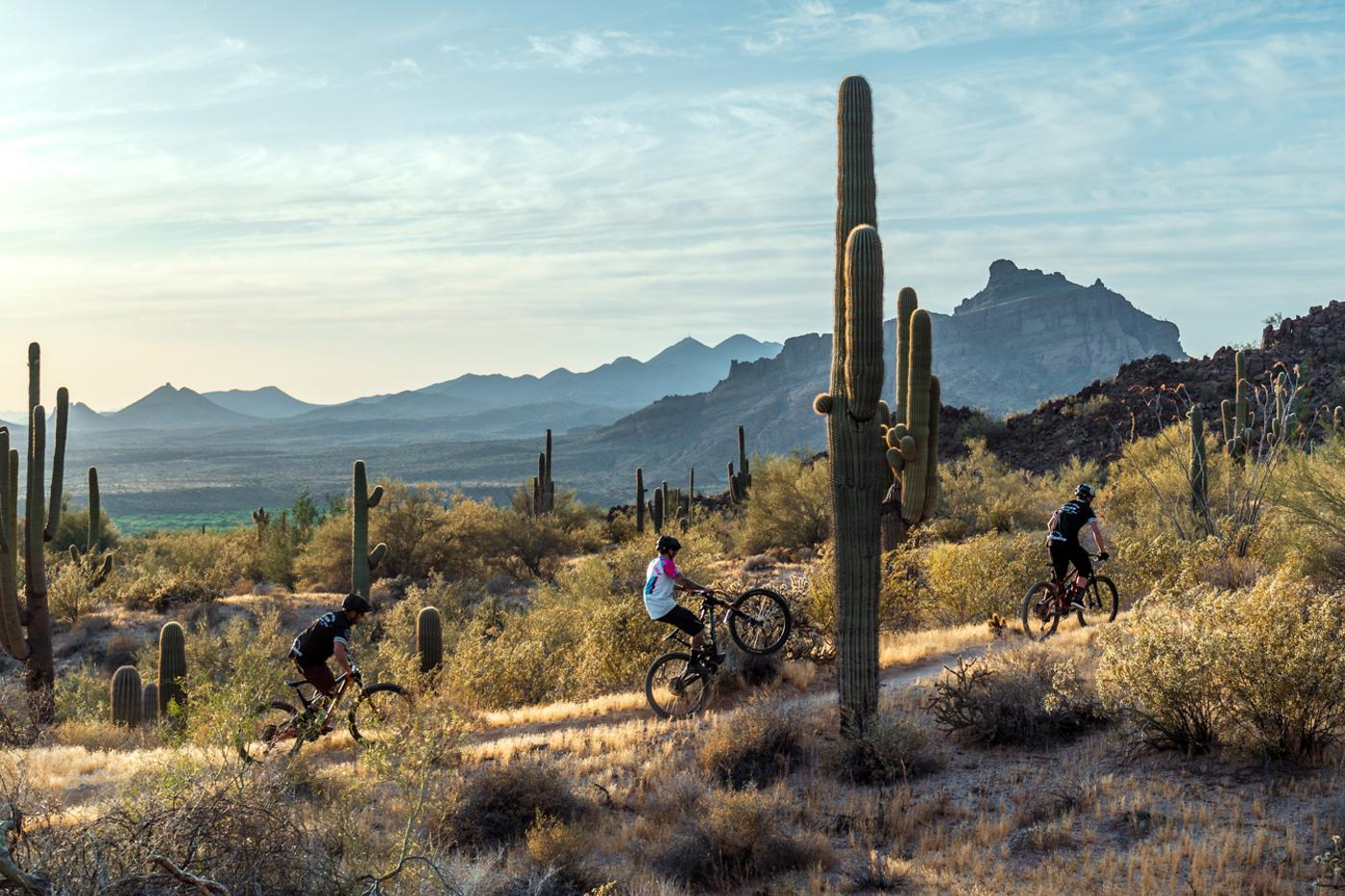 Phoenix's Hawes Trail System Master Plan Project is Seeking Public Comment Until March 23!