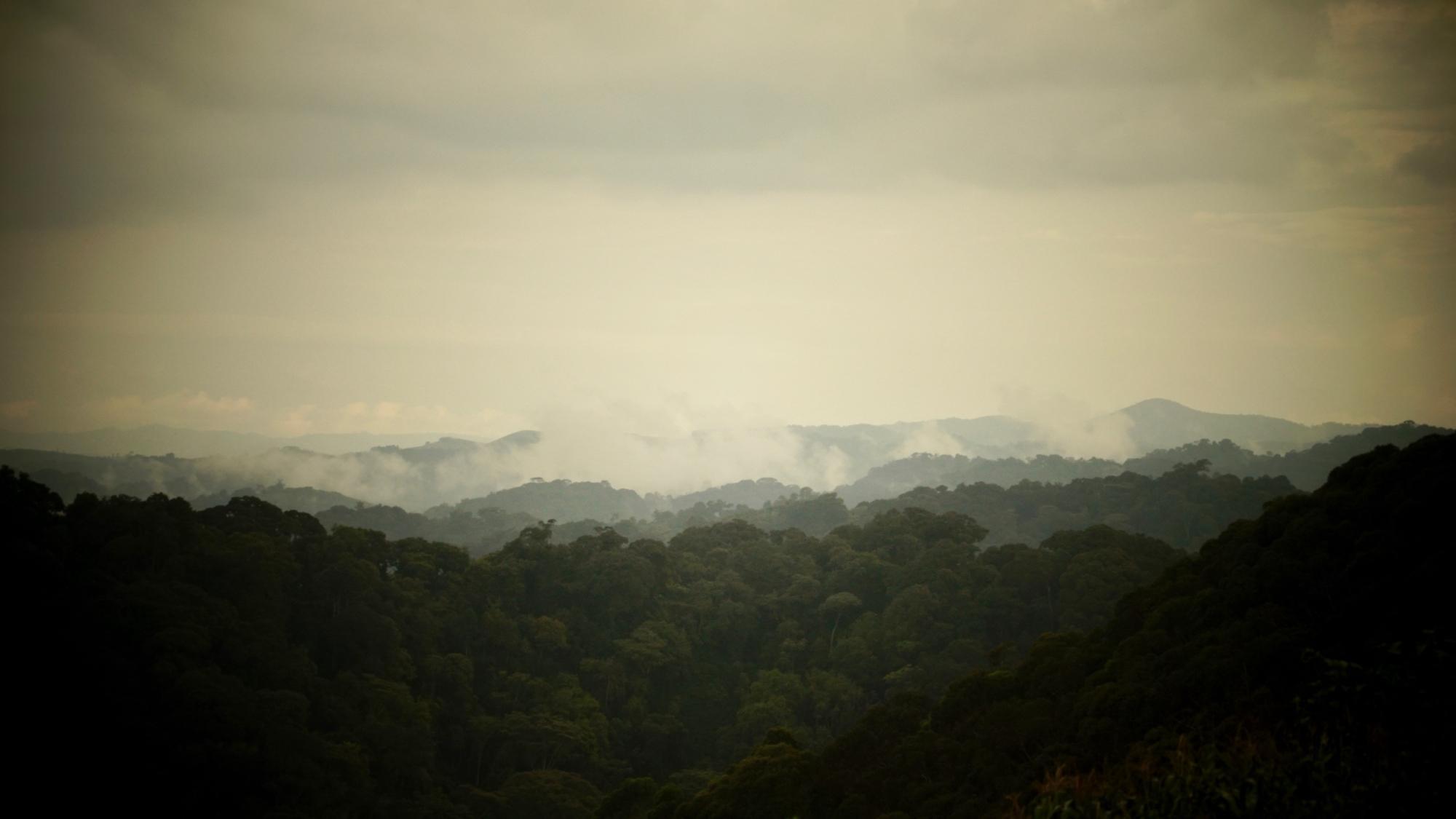 Tugende: the Race Around Rwanda