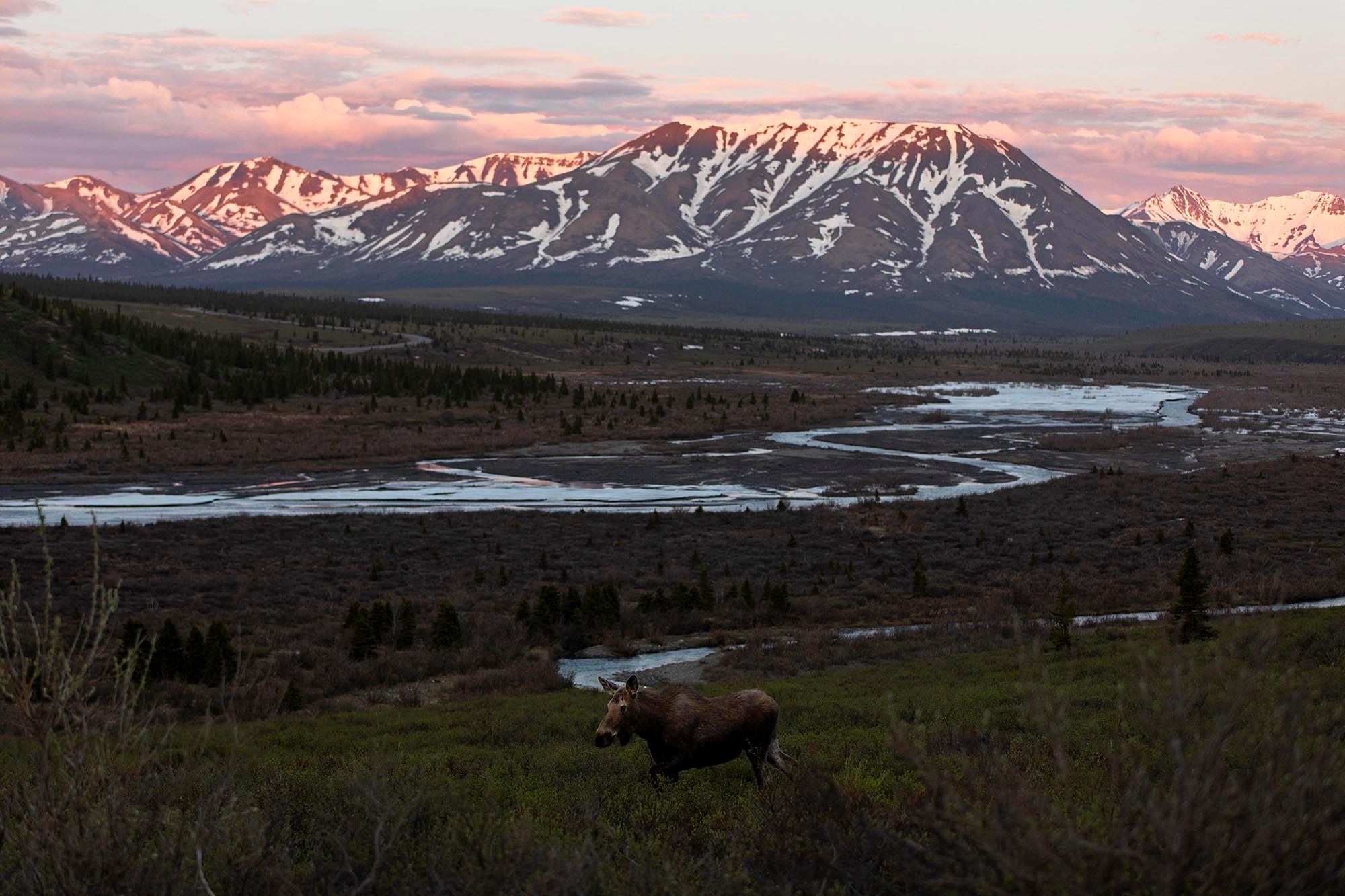 2020 Lael Rides Alaska 005
