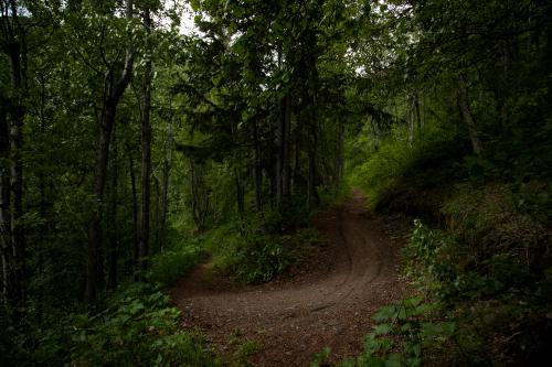 DevilÕs Creek Trail. (Rugile Kaladyte)