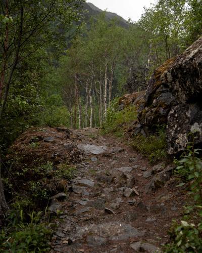 Johnson Pass. (Rugile Kaladyte)