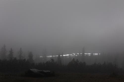 Views from the Seward Highway. (Rugile Kaladyte)