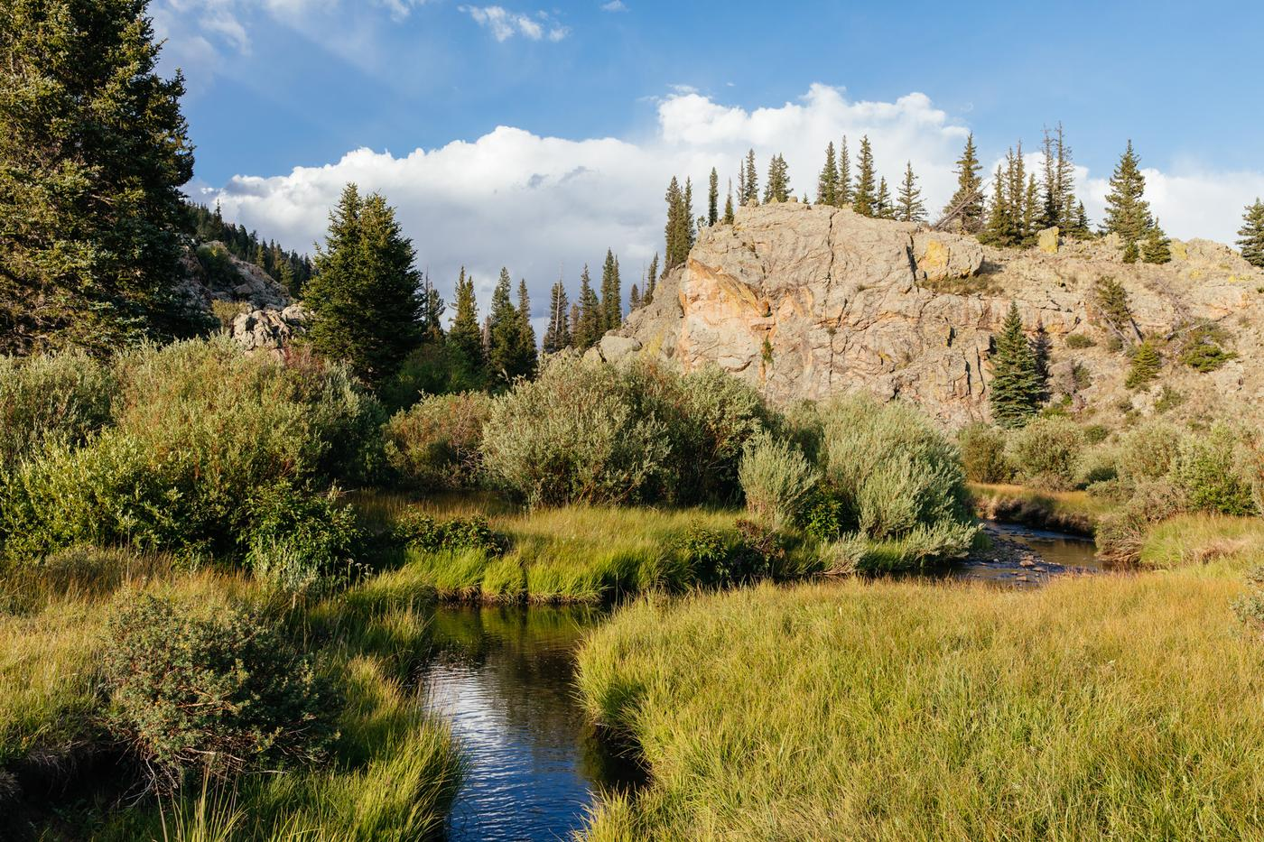 A Discussion About Wilderness: Backpacking and Fly Fishing in Northern New Mexico