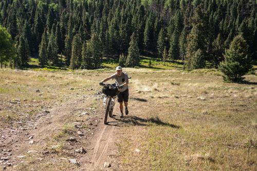 Yes, there are hike-a-bikes