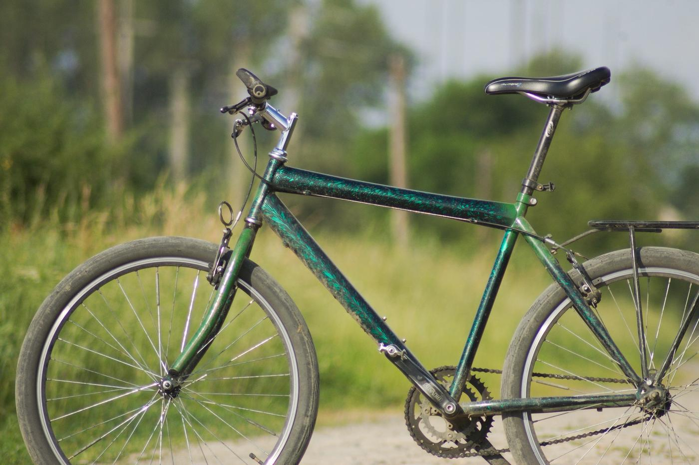 Readers' Rides: Ptrutz's Daily Cycling Companion