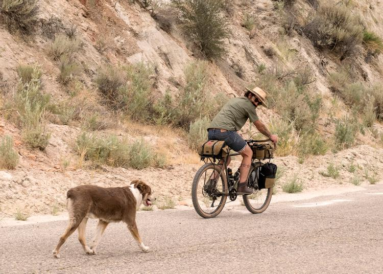 Readers' Rides: Casey from Campandgoslow's 'Great Basin' Crust Evasion