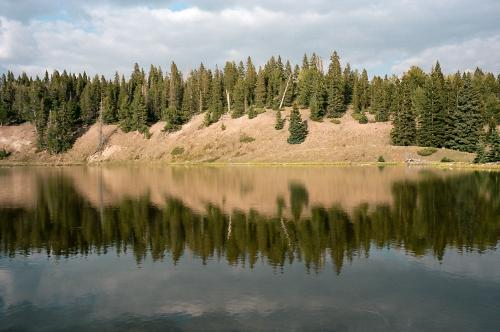 Lagunitas Lake