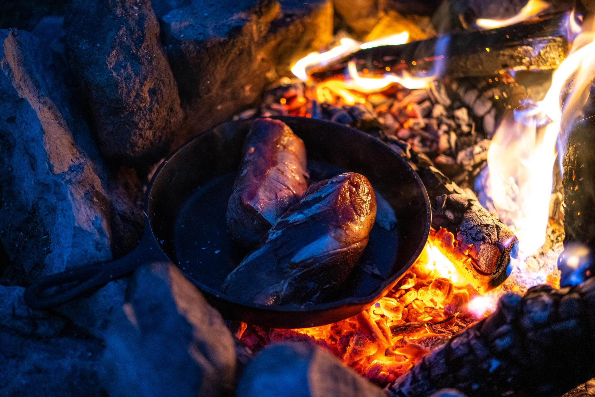 Venison steaks - photo Kyle Klain