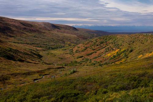 Alaska Roads Wrap Up — Rugile Kaladyte 19