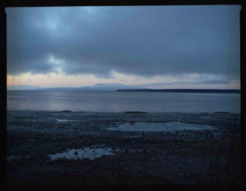 Alaska Roads Wrap Up — Rugile Kaladyte 31
