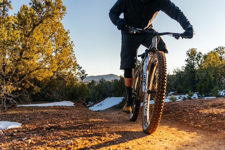 From the Masters of Metal: a Long-Term Review of the Moots Womble 29er