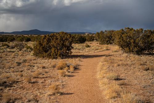 2. El Camino Real