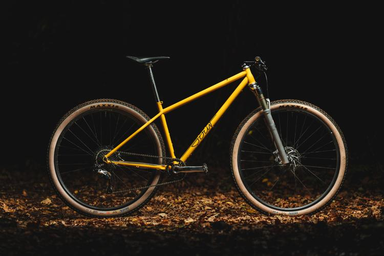 Sour Bikes' Pasta Party Hardtail