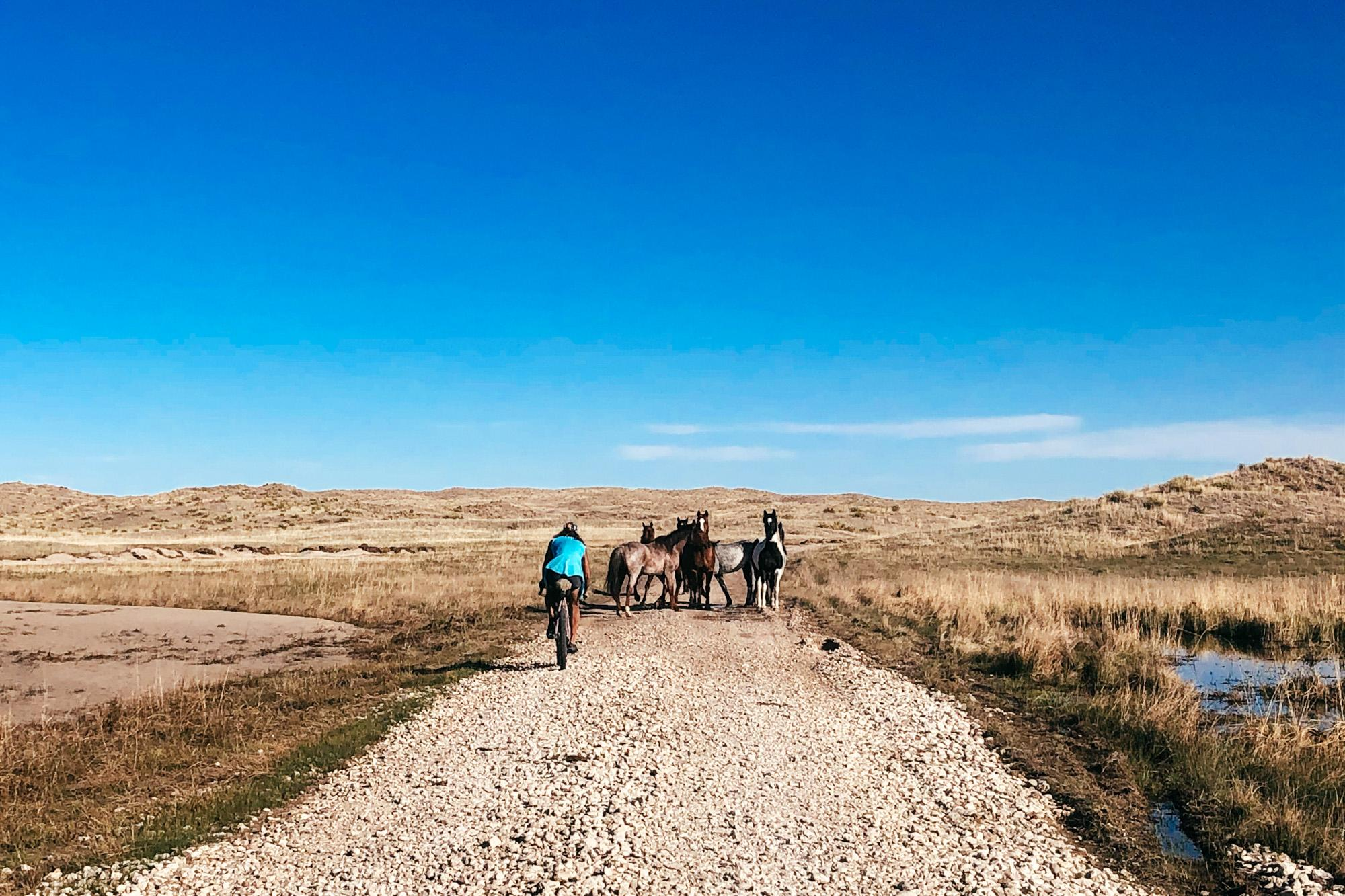 High Plains Byway Extended Edition A Sandhills Odyssey