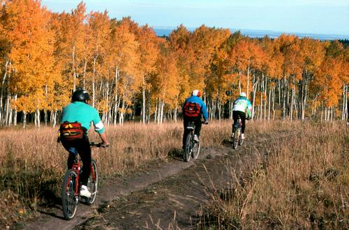 Bill Harris - Riders amid autumn colors on the Tabeguache Trail