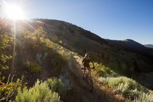 Oregon Timber Trail Race