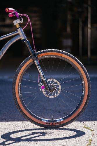 Matt's Why Cycles El Jefe SS 29er with Paul Components 30th Anniversary Bits