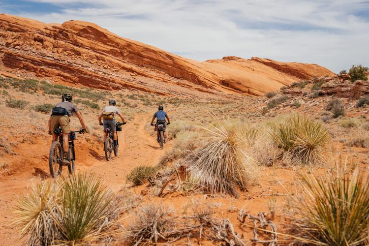 Education Through Experiences: Bikepacking the Yellow Dirt Route onto Comb Ridge with Dzil Ta'ah Adventures