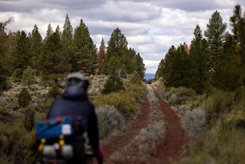 OC&E Woods Line State Trail. (Rugile Kaladyte)