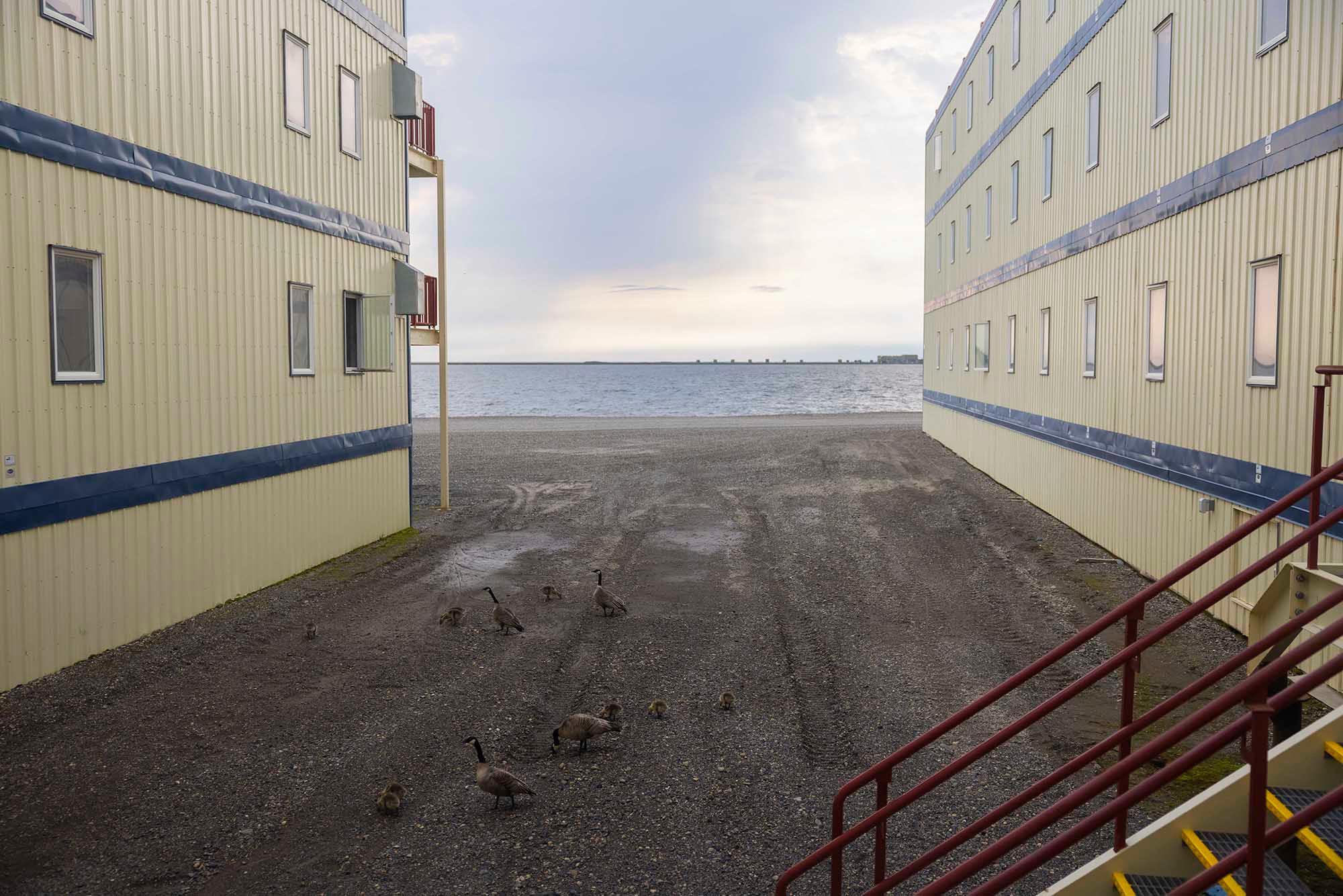 2021 July — Alaska Pipeline FKT — Pre FKT 07 small