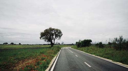 Riding the N230 Route in Portugal