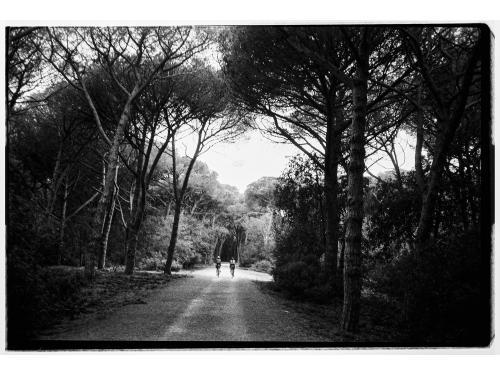 tuscany 024
