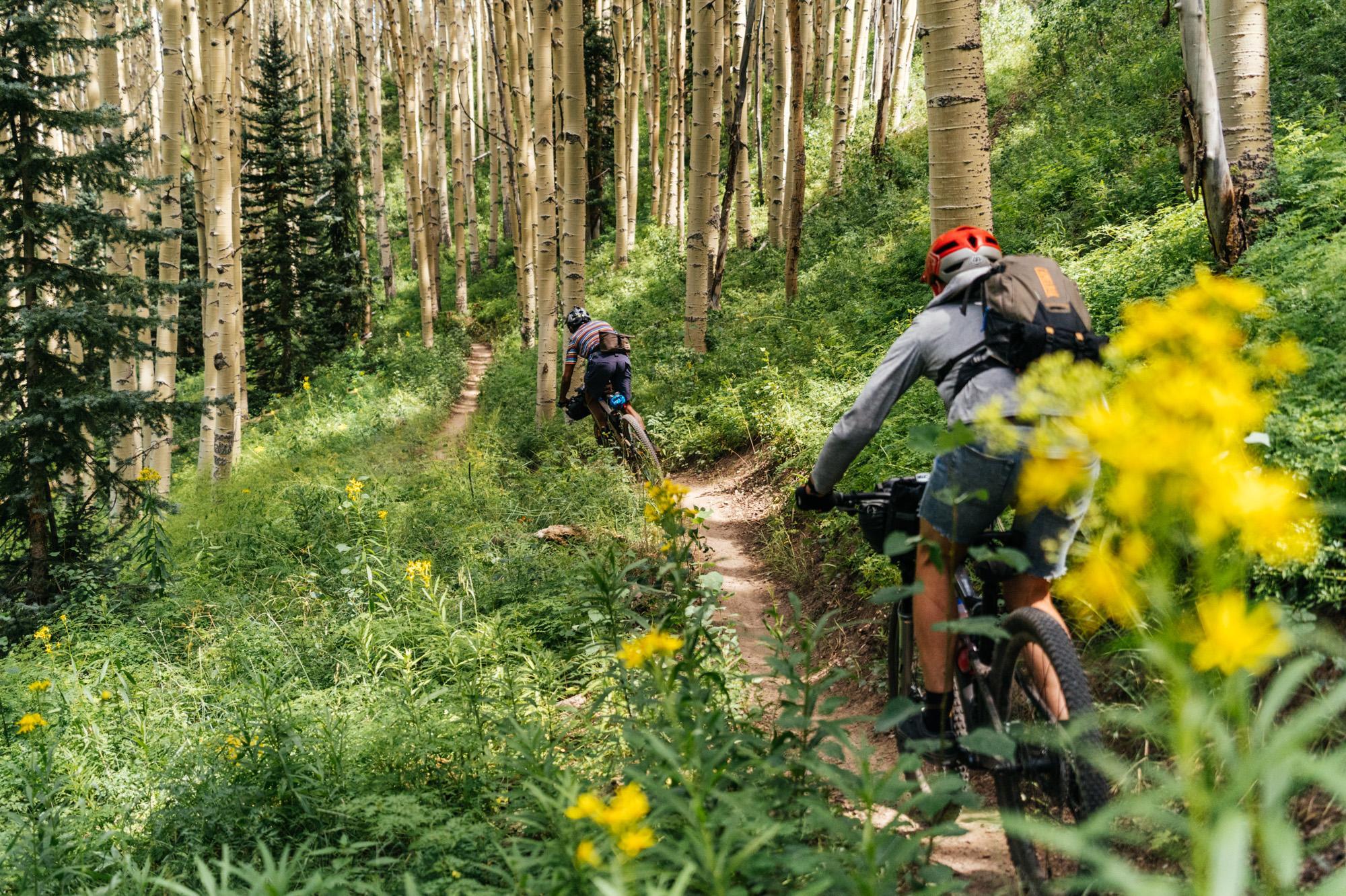 Magic Meadows Trail