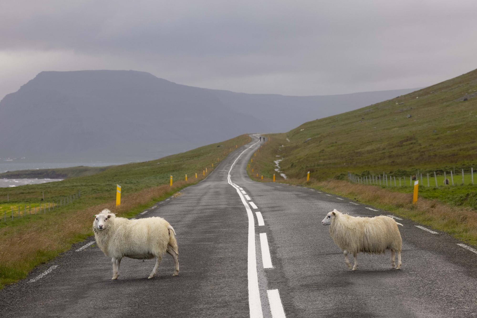 46 Westfjords Way — Rugile Kaladyte — Part Three