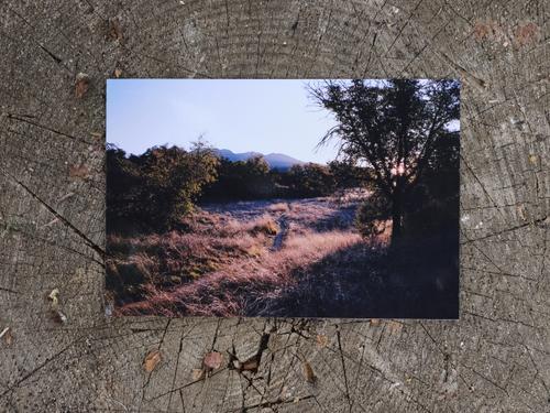 2019 Arizona Trail
