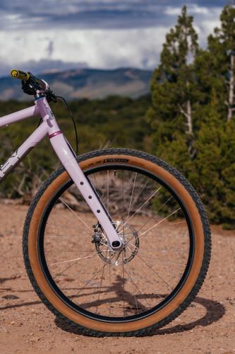 Simon's Lavender Titanium Haley 29+ Rigid MTB