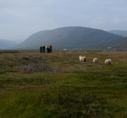 Westfjords Way — Evan Ruderman — Part Two — 06