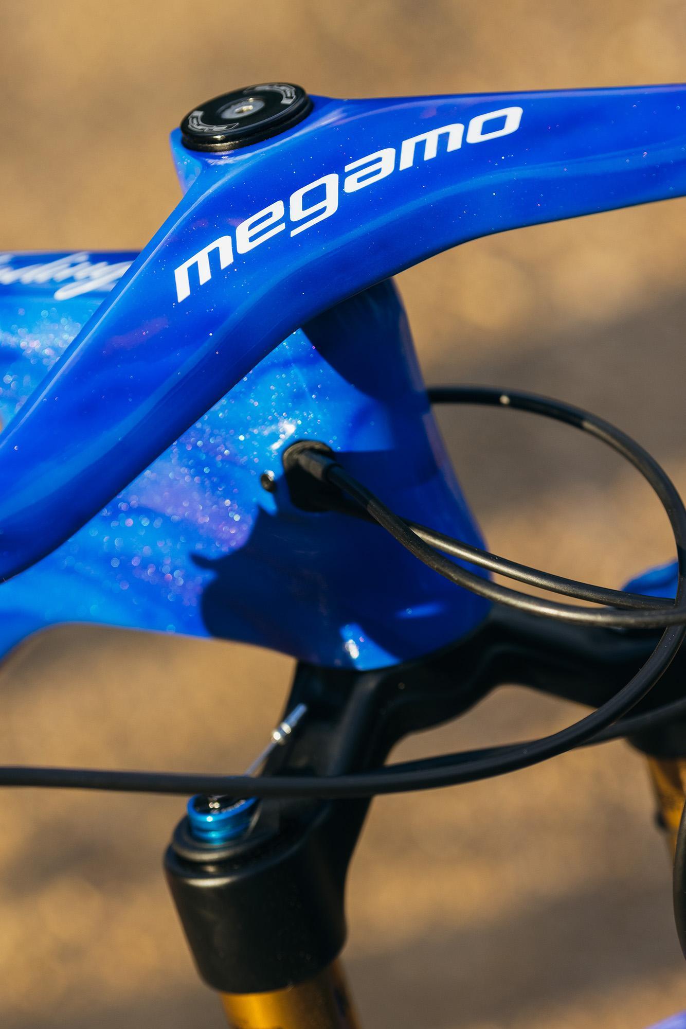 Sami's Fading Megamo Track Full Suspension MTB