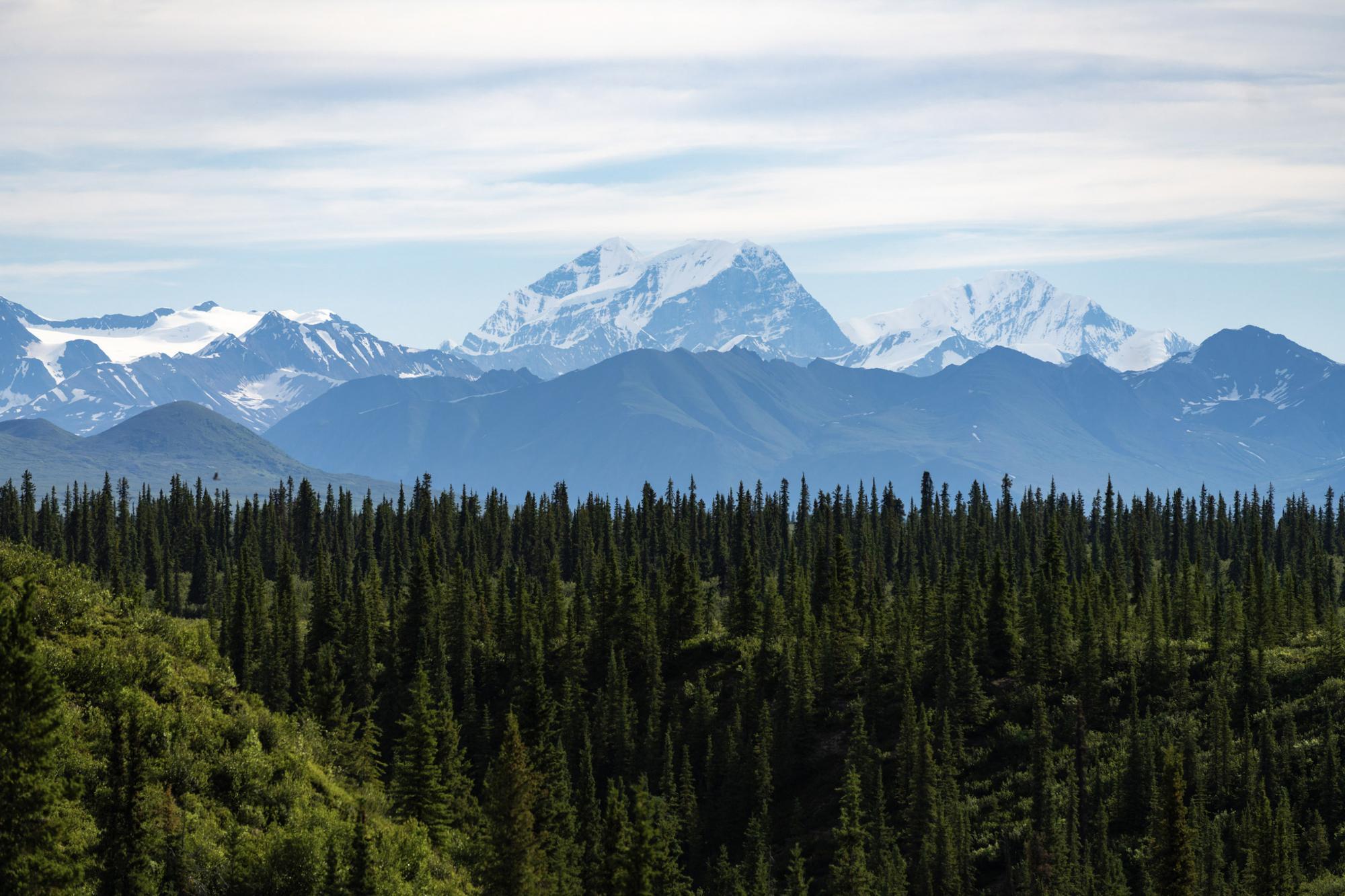 130 Miles Bicycle Touring Through Alaska: Team Mosaic on the Denali Highway