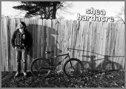 Shea.jpg