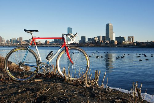 merckx_mx_leader_bos_skyline_2932.jpg